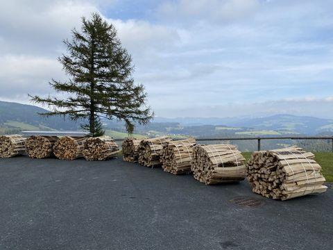 Sonstige Brennholz