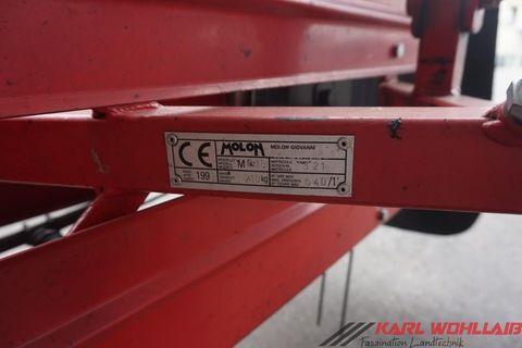 Molon 230/4 Ref