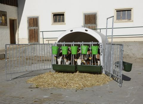 Kerbl Kälberhütte/Kälberiglu