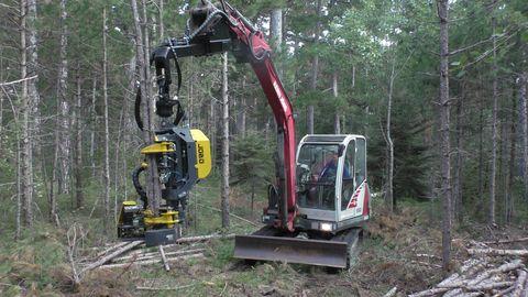 Sonstige Syketec Jobo ST50  Bambi Harvester