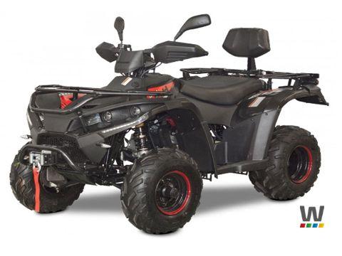 Sonstige Linhai ATV 200