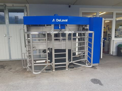 Milking equipment – used and new for sale - Landwirt com
