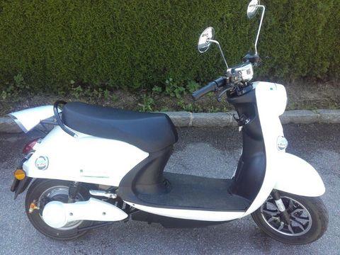 Sonstige E-Moped