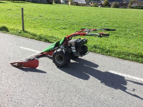 Rapid Swiss
