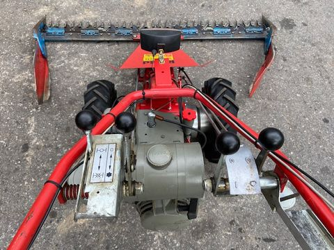 Rapid 306