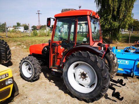 Goldoni Star 90 traktor