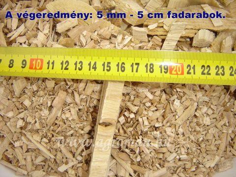 3986-81530e8f6020e9a005c55dac4c30ad11-538168