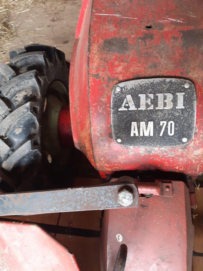 sonstige, AM 70 Motormäher   Motormäher   Agropool