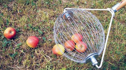 sonstige, Rollblitz Äpfel