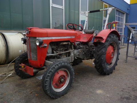 Massey Ferguson MF 30 Schlepper Traktor