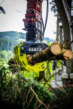 Lasco Holzzangenserie LA 800 HZ - LA 2000 HZ