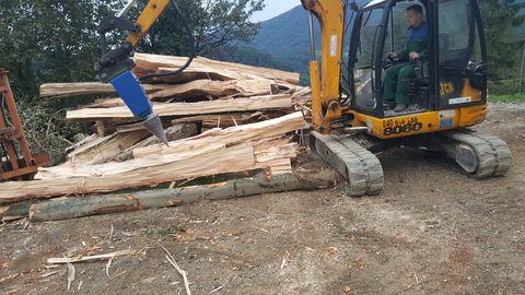 Sonstige Kegelspalter Holzspaler Bagger 1.100 ccm