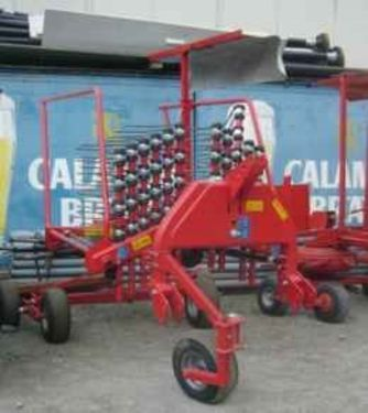 Lely Hibiscus 430