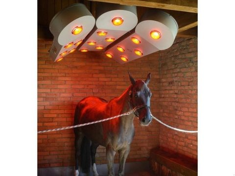 MD Landmaschinen Pferdesolarium SOLAR-TEC1