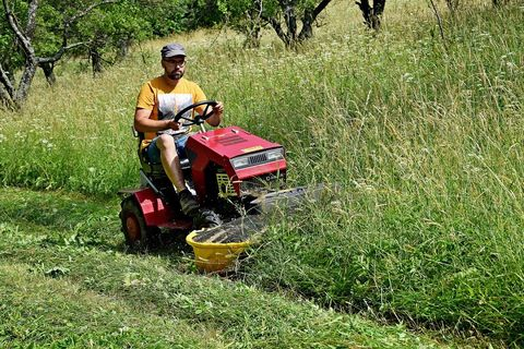 GOLJAT Heckscheibenmähwerk 121+ traktor Panter5