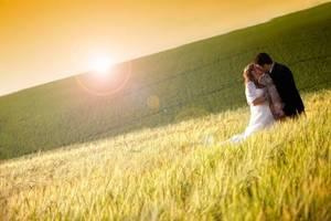 Vor der Ernte geht sich noch ein Hochzeitsfoto aus