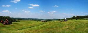 Typical Summerday - Fotowettbewerb: Landwirtschaft im Sommer ...