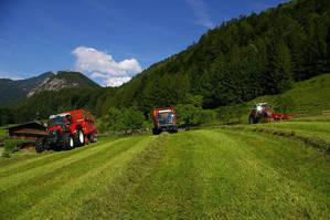 3 Lindner beim letzten Schnitt in Tirol
