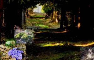 sauberer Lichtblick,,in Lila grün braun