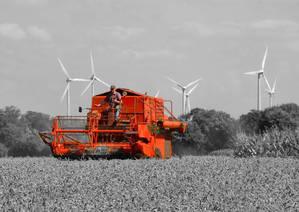 Weizen-Ernte mit dem Deutz-Fahr