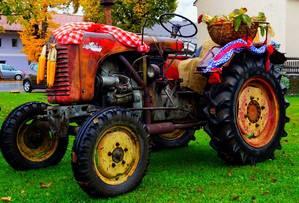 Alter Steyr Traktor