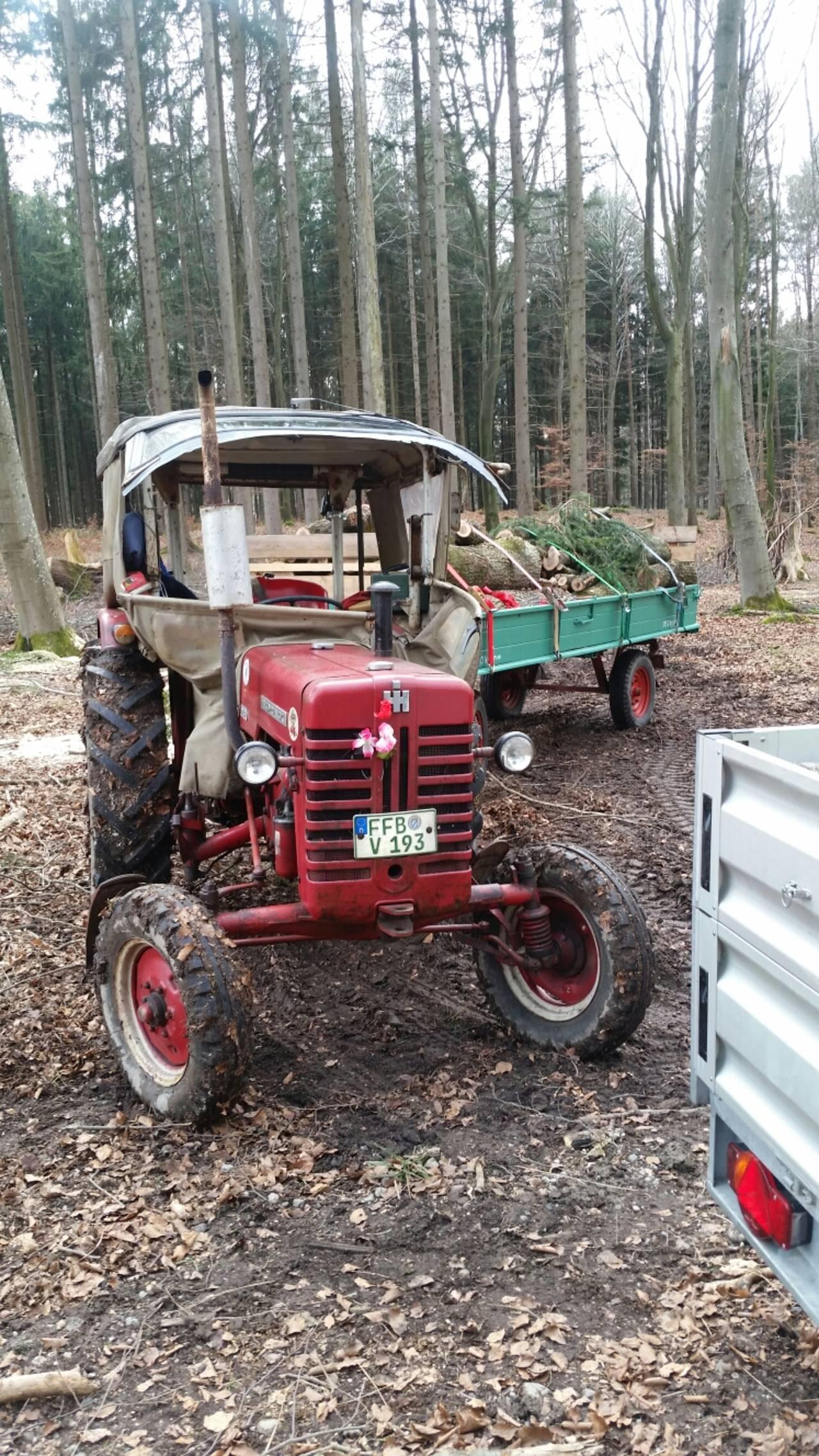 Holzarbeiten mit D439