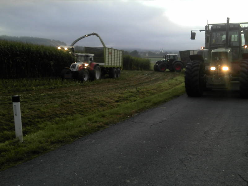 Klettergerüst Traktor : Maishäckseln in der morgendämmerung dein traktor