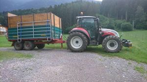 Vieh Transport nur mit steyr
