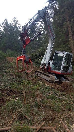 TB 175 im Forst