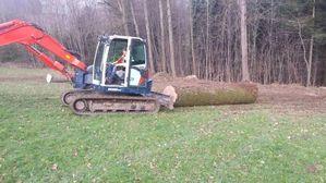 Holzbringung