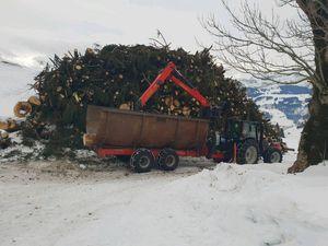 Hackholzproduktion
