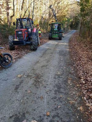 Wald Arbeit 2018