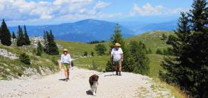 Wandern mit Hund auf der Villacher Alpe