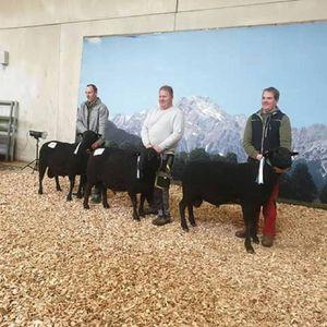 Landesausstellung 2019 Jura Widdern Steiermark