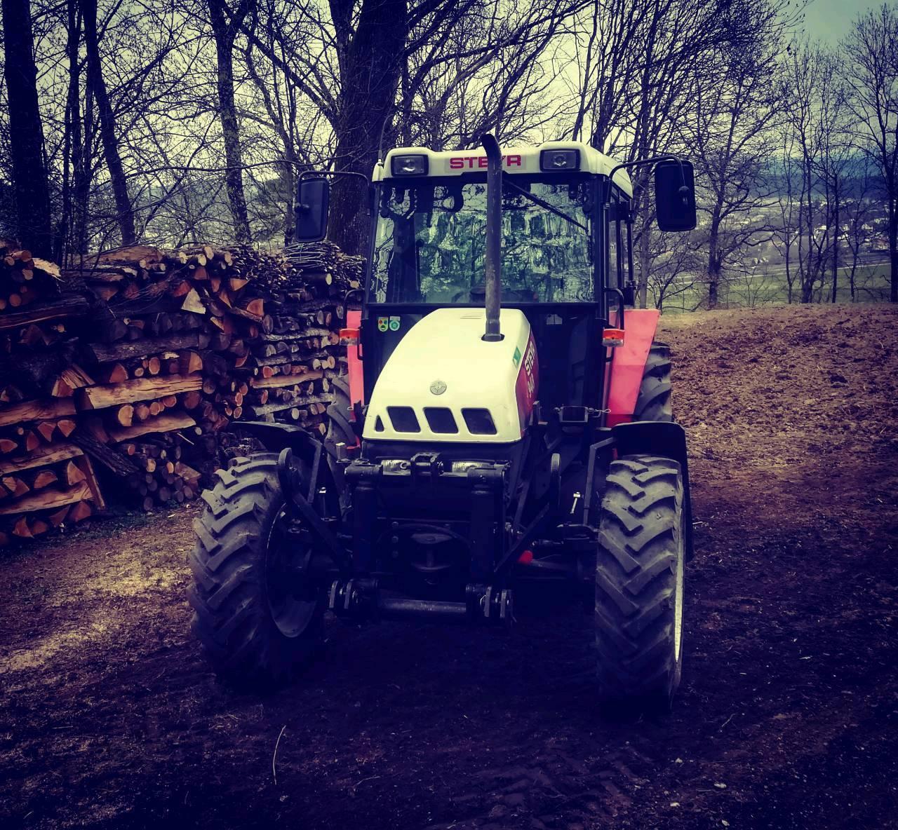 Steyr 948 im  Holz