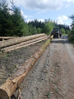 Käferholzrückung New Holland