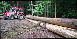 Lindner beim Langholz rücken