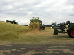 65.000t Mais in 4 Wochen