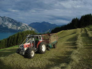 Alpin Heuernte