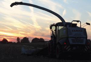 Das LU Terhuf im Sonnenuntergang