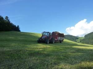 Österreich im Schwarzwald !