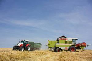 Weizenernte mit Claas und Steyr Power