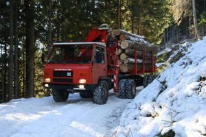 Reform Muli 600 beim Holztransport