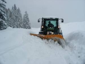 Fein, der erste Schnee!