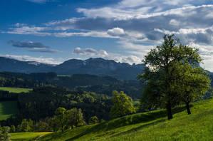 Frühling im Alpenvorland